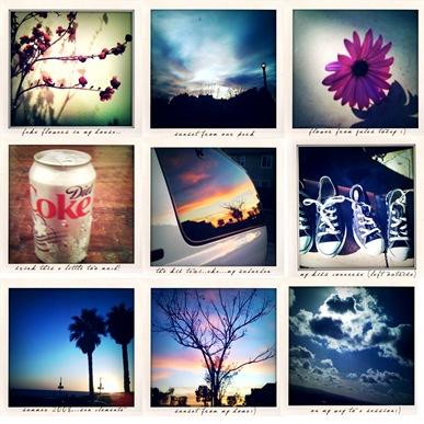 Polaroid-shots-blog