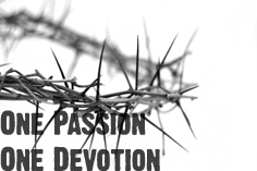 One Passion One Devotion
