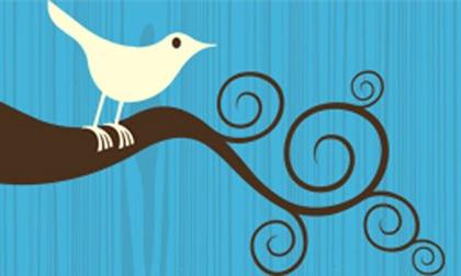 Twitter-bird-logo-001