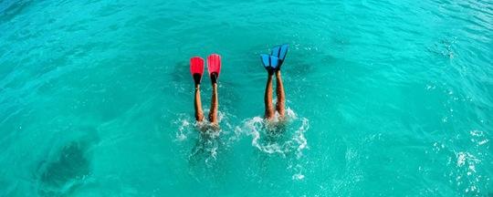 228__1000x400_pano_snorkeling