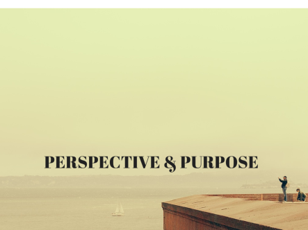 PERSPECTIVE & PURPOSE (1)