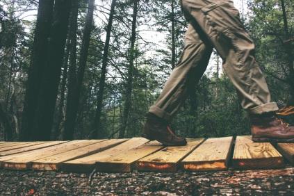 lynDyjGSR9eR57ouPIEE_IMG_woods