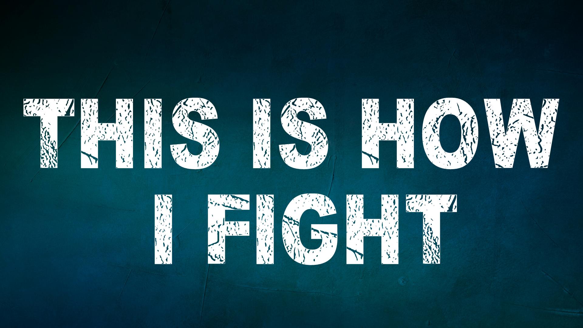 fight 12 (1)